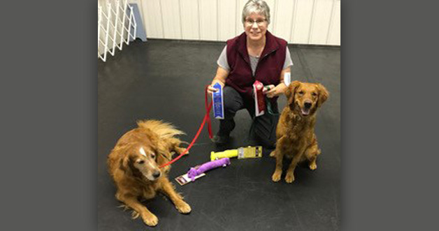 Joan with her dogs Shelby and Kalli. Showing some ribbons won